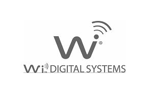 wi300